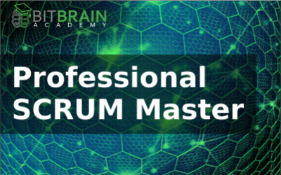 Professional SCRUM Master, PSM1 (2 Tage)